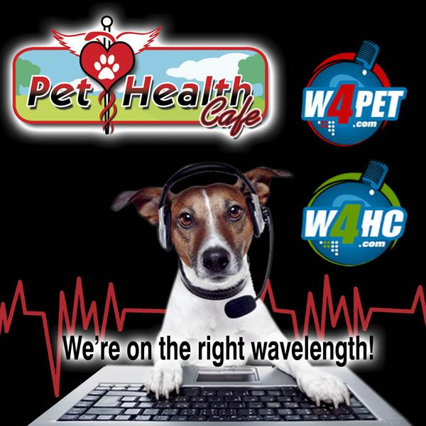 Pet Health Café on iHeartRadio